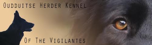 banner-of-the-vigilantes
