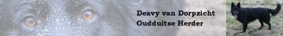 banner-deavy-van-dorpzicht-4-2